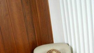 Юлия Тимошенко - 1UovU3e6AmXSC2S4LKBCp1511068927.jpg
